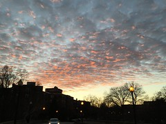 Clouds at sunset, sky over Dumbarton Bridge, Q Street NW, Washington, D.C. (Paul McClure DC) Tags: washingtondc districtofcolumbia jan2018 georgetown sky sunset
