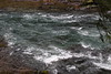 The cold and dark waters of the North Umpqua (rozoneill) Tags: north umpqua trail river national forest mott segment tioga swiftwater calf oregon hiking