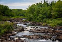 As the River Flows  (Explored) (Katrina Wright) Tags: musquodoboit ns novascotia dsc4217 river rocks landscape scenery nature scenic trees green
