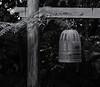 Japanese Bell (Tim Ravenscroft) Tags: bell japanese garden selby sarasota hasselblad hasselbladx1d x1d monochrome blackandwhite blackwhite