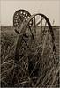 Et déjà... Une autre époque (Jean-Marie Lison) Tags: angreau rouille v700 scandia machineagricole noiretblanc nb monochrome prairie champ honnelles