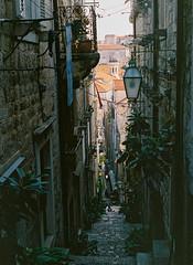 Old Dubrovnik (spiridono) Tags: city bridge film croatia kodak pedestrian mamiya alley old town 645 120 canal medium format promenade dubrovnik historical footbridge narrow street building exterior walkway break tourboat