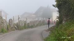 Niebla en el Baztán (Eva Sion) Tags: 2017 baztán españa navarra nikond5100 spain naturaleza niebla fog