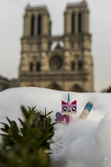 Unikitty wants to snowboard in Paris (Ballou34) Tags: 2018 7dmark2 7dmarkii 7d2 7dii afol ballou34 canon canon7dmarkii canon7dii eos eos7dmarkii eos7d2 eos7dii flickr lego legographer legography minifigures photography stuckinplastic toy toyphotography toys paris4earrondissement îledefrance france fr stuck in plastic notre dame cathedral unikitty snowboard snow winter