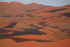 Namib Sand Sea:  Morning Light (jswensen2012) Tags: dunes sanddunes namibia desert namibnaukluftnationalpark namibsandsea sossusvlei namibdesert africa