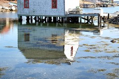 Mirrored (halifaxlight) Tags: canada novascotia prospect fishingvillage shed lobstertraps dock sea reflection sunny