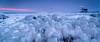 Icy morning colors (Erik van Lent) Tags: marken thenetherlands pink blue frozen ice winter sunrise bluehour