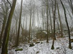 Felswald (Jörg Paul Kaspari) Tags: irrel teufelsschlucht spaziergang wald fels felsen nebel winter schnee eifel südeifel naturpark