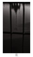 Reflection of Thayumanavar Temple (krishartsphotography) Tags: krishnansrinivasan krishnan srinivasan krish arts photography monochrome fineart fine art thayumanavar temple tank kulam grill reflection theppakulam trichy tamilnadu india affinity photo nik plugins water