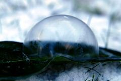 the last cold days (nelesch14) Tags: soapbubble macro winter cold freezing leaves crystals snow pastel white light