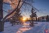 Evening at a park 12 (Kasia Sokulska (KasiaBasic)) Tags: canada alberta edmonton river valley rundle park winter sunset landscape
