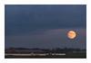 Supermoon - Fuji Superia 800 (magnus.joensson) Tags: sweden swedish skåne trelleborg contax aria cy zeiss teletessar 300mm moon fuji superia 800 c41 24x36 analog film exp