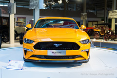 Ford Mustang GT 5.0 Fastback - 2018 (Perico001) Tags: mustang gt fastback 50 coupé v8 ford usa vsa detroit henryford fordmotorcompany auto automobil automobile automobiles car voiture vehicle véhicule wagen pkw automotive autoshow autosalon motorshow carshow ausstellung exhibition exposition expo verkehrausstellung belgië belgique belgium belgien belgica brussel bruxelles brussels autoworld nikon df 2018 americandreamcarsbikes museum museo automuseum trafficmuseum verkehrsmuseum muséeautomobile us america amerika