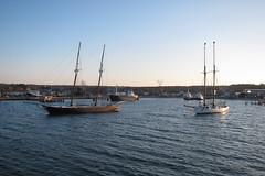 IMG_6651 (Dan Correia) Tags: marthasvineyard island ocean harbor boat shenandoah