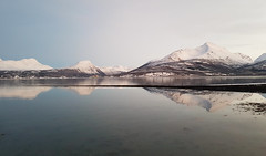Reflections, Balsfjord (GeirB,) Tags: balsfjord troms storsteinnes fjord fjell mountains outdoor uteliv grief sorg nordnorge norge norway northernnorway
