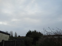 Monday, 22nd, Looking grey and cloudy IMG_2184 (tomylees) Tags: essex morning winter january 2018 22nd monday weather cloudy grey