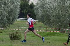 Andrea Virgili