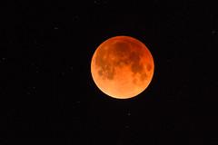 Full Moon, Two Hills County, Alberta (WherezJeff) Tags: 2018 alberta canada january lunareclipse bluemoon fullmoon d850