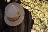 Mi sombrero (Letua) Tags: arbol green hat madera naturaleza nature relax sombrero summer tronco vacaciones verano verde wood