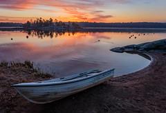 stranded (nalle_folkblom) Tags: reflections bird boatlife light landscape beach stockholm sweden sunset waterscape boat ngc