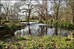 08.02.18 Morden Hall Park....Waterfall.. (A.P.PHOTOGRAPHY.) Tags: mordenhallpark merton london views waterfall water bridges nikond7000 nikkor18300 walk trees reflections