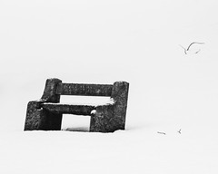 Bluff City Cemetery Snow ©2018 Lauri Novak (LauriNovakPhotography) Tags: bluffcitycemetery snow winter elgin illinois cemetery blackandwhite high key weather grave headstones