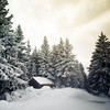 Winter landscape (Zeeyolq Photography) Tags: mountains france alps landscape tree winter snow chamrousse