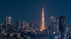Tokyo Tower (robertdownie) Tags: bluehour japan skyline tokyo tokyotower architecture building exterior builtstructure city cityscape clearsky dense dystopia illuminated modern night nopeople outdoors sky skyscraper tall tallhigh tower traveldestinations urbanskyline