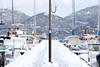 Port de plaisance, Porto-Vecchio, Corse, France (Thierry Hoppe) Tags: portdeplaisance portovecchio corse france vecchio corsica port snow snowstorm winter porto ponton marina plaisance enneigé