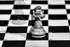 Knight to D2 (G_HOWDEN) Tags: macromondays doubleexposure chess knight