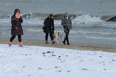 neve sulla spiaggia (N I C K ....1 8 2 8) Tags: nick1828 neve sea spiaggia beach snow dog donna people persone cane mare nick 1828