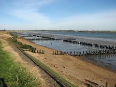 The River Orwell near Shotley Gate (JonCombe) Tags: coastwalk193 suffolk stourandorwellwalk coast coastwalk orwell