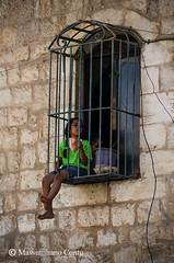 Uccellini in gabbia - Betlemme, Palestina (Massimiliano Contu) Tags: betlemme palestina cisgiordania palestine west bank bethlehem bambini bambine bambina child children gabbia prigione sbarre galera uccelli uccellini arabi palestinesi arabic palestinians jail prison cage bars girl birds