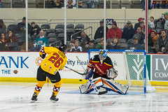 "2018 ECHL All Star-1244 • <a style=""font-size:0.8em;"" href=""http://www.flickr.com/photos/134016632@N02/25914581088/"" target=""_blank"">View on Flickr</a>"