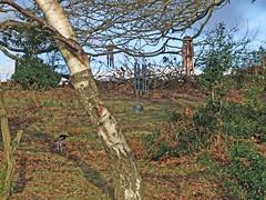 Recording wind chimes at top of north slope of Teign Gorge (Philip_Goddard) Tags: europe unitedkingdom britain british britishisles greatbritain uk england southwestengland devon dartmoornationalpark drewsteignton teignvalley teigngorge recording sonypcmm10 windchimes