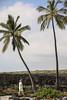 Āle'ale'a Heiau (wyojones) Tags: puuhonuaohōnaunaunationalhistoricalpark placeofrefuge āle'ale'aheiau pu'uhonuaheiau platform hula chiefs williamellis williamwright archeologist xedmundjladd rock basalt tourist walk man