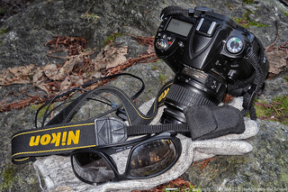 Nikon D90. 85,048 pictures taken since July 21, 2009. (1024x680)