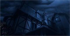 Bienvenue à Pléneuf-Val-André (kalzennyg) Tags: pleneuf valandré bretagne brittany côtesdarmor chat cat gato dark gothique