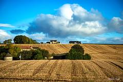 La campagne Ecossaise (didier95) Tags: campagne ecosse paysage champ ciel nuage bleu vert ferme grangemouth