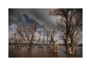Flooding at Slot Loevestein