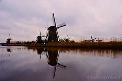 Typical Dutch landscape, Kinderdijk (maudybrt) Tags: nikond3200 nikon sigma18200 sigma reflections reflection worldheritage travelphotography travel netherlands holland photography landscapephotography dutchlandscape landscape dutch kinderdijk