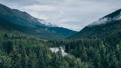 Alaska, da Talkeetna a Homer