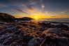 IMGP7176 (jarle.kvam) Tags: frozen seaweed raetnationalpark sea skagerak norway shore pebblebeach grouptripod