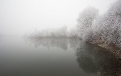 cold and misty (++sepp++) Tags: bayern deutschland landscape landschaft landschaftsfotografie lechfeld winter graben de raureif hoarfrost bavaria germany lake see pond spiegelung reflection mirroring