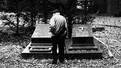love never dies (frax[be]) Tags: streetphotography street cemetery atmosphere moody fuji xe3 58mm rokkor sadness outdoor highcontrast monochrome noiretblanc dark blackandwhite blackwhitephotos