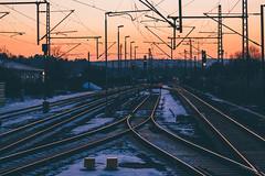 Joining (freyavev) Tags: renningen bahnhof trainstation traintracks train badenwürttemberg germany deutschland sunset dusk snow telelens outdoor urban vsco mikasniftyfifty