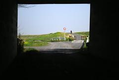 トンネルの向こう (*suika *) Tags: spring waterside tunnel blur outoffocus walking
