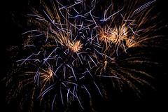 Winterleuchten 12 (Gi123456789****) Tags: nacht dortmund winterleuchten feuerwerk westfalenpark