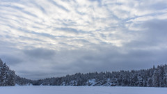 Wonders of snow (Tatu234) Tags: snow winter sony dslr camera january 2018 amateur photographer photography photograph photooftheday potd espoo suomi finland 20mm lens sky skylovers clouds frozen lake beautiful landscape europe view forest nature tree trees cold lovely day light bright exposure
