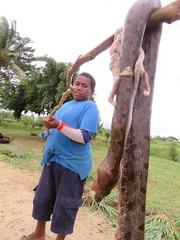 VANUATU (43) (stevefenech) Tags: oceania south pacific islands adventure travel backpacking stephen fenech fennock fun vanuatu people portrait